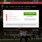 fv-professional theme for fanvictor
